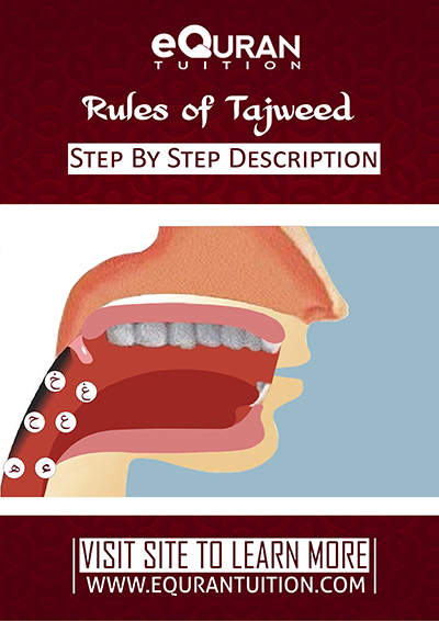 download tajweed book